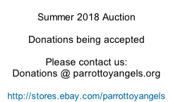 Summer 2018 Auction  Donations being accepted  Please contact us: Donations @ parrottoyangels.org  http://stores.ebay.com/parrottoyangels