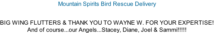 Mountain Spirits Bird Rescue Delivery   BIG WING FLUTTERS & THANK YOU TO WAYNE W. FOR YOUR EXPERTISE! And of course...our Angels...Stacey, Diane, Joel & Sammi!!!!!